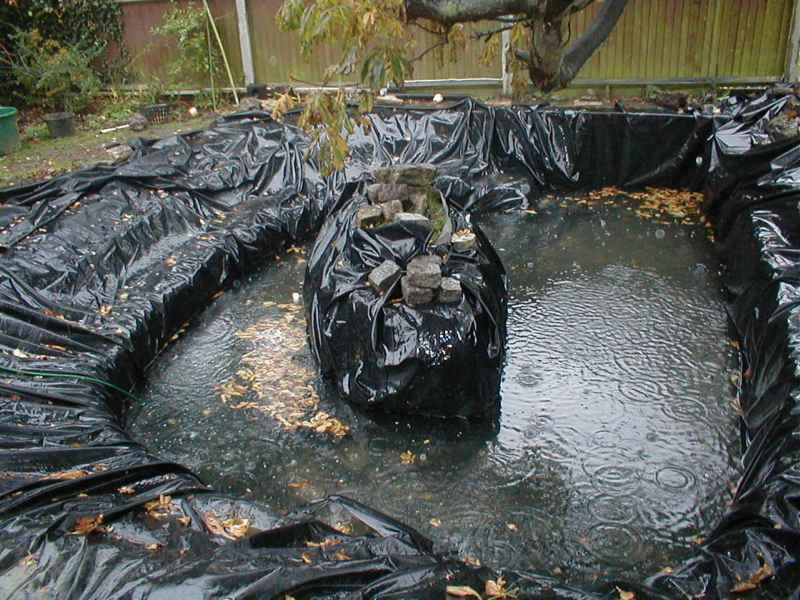 Croydon ducks garden pond and fish for Rubber pond liner
